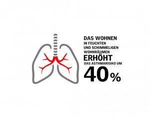 Henke Dachfenster für Rinteln - VELUX Infografik Asthma